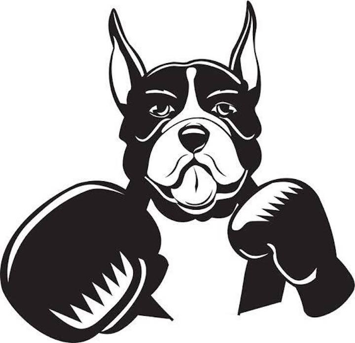 www.boxingforum24.com